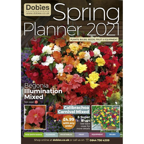 Dobies March Catalogue