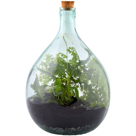 Terrarium Bottle 15L