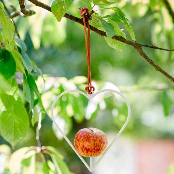 Heart Shaped Apple Bird Feeder