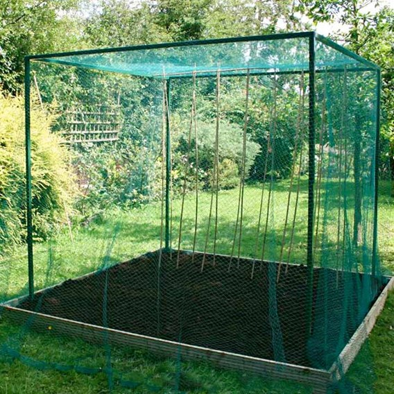 Walk-in Fruit Cage with Door