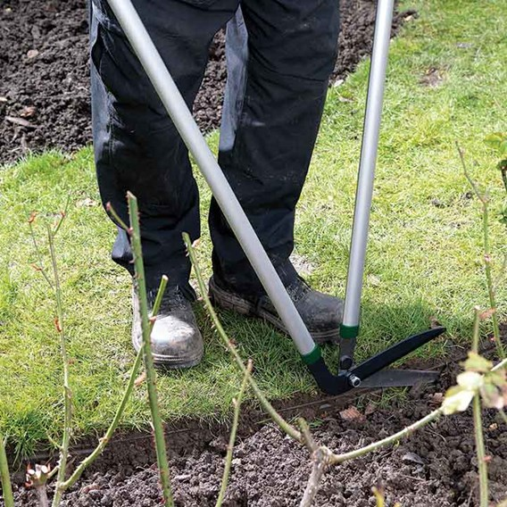 Kew Lawn Edging Shears