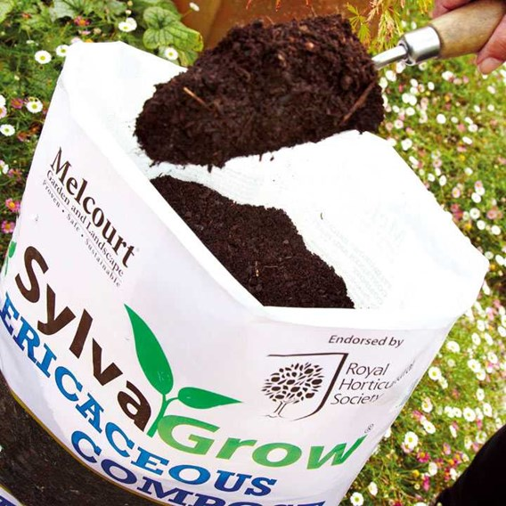 RHS SylvaGrow Ericaceoous Compost 50 Litres (Peat Free)