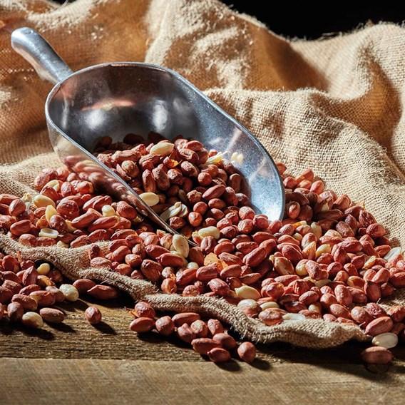 Peanuts - Aflatoxin Tested