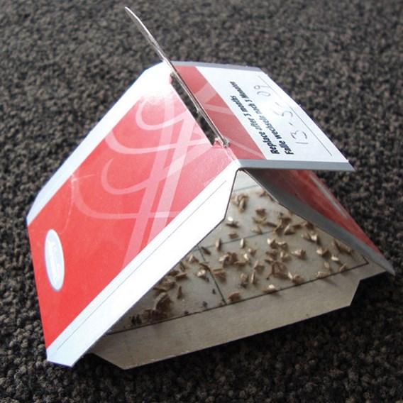 Clothes Moth Trap
