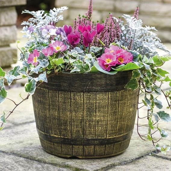 Whisky Barrel Planter