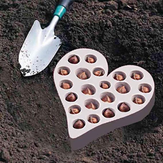 Plant-O-Tray Heart Preplanted Bulbs - Tulip & Crocus