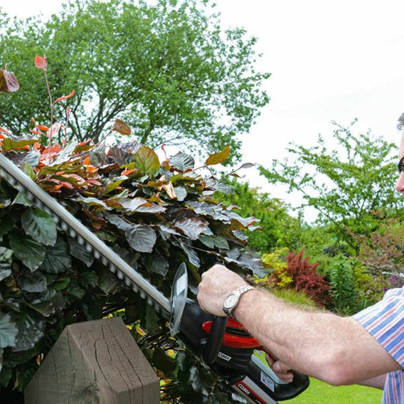 Cobra 24V Cordless Hedgetrimmer With Battery & Charger