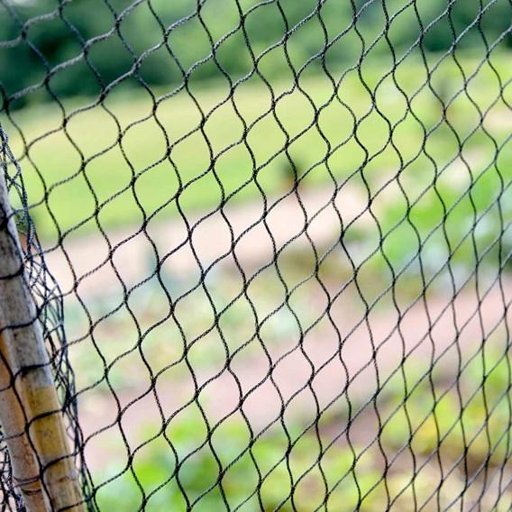 Superior Fruit Cage Net