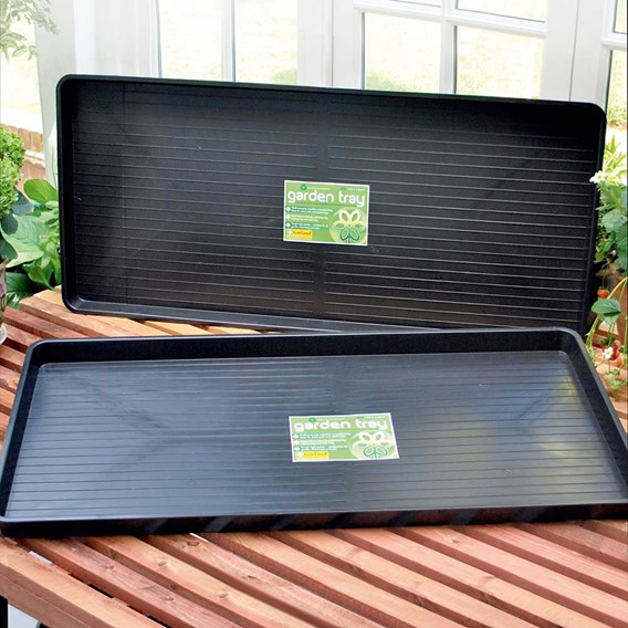 Staging Trays