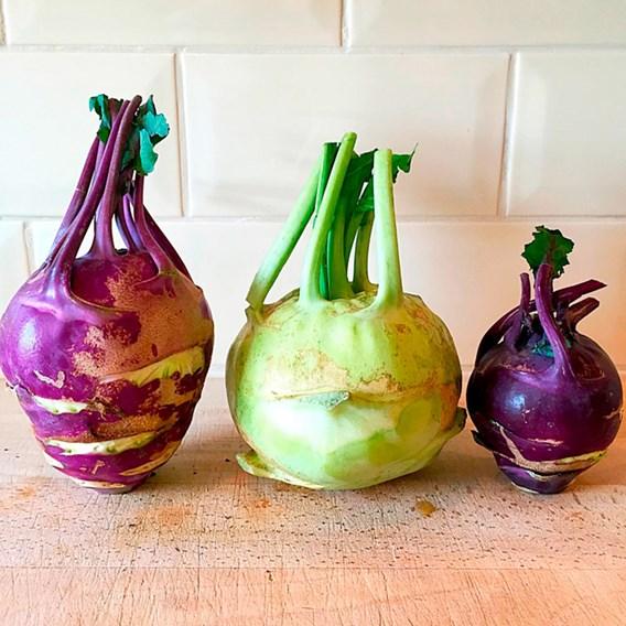 Kohlrabi Seeds - Purple And White Mix