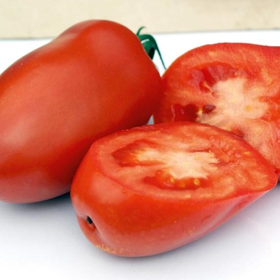 Tomato Seeds - Giulietta F1
