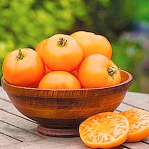 Tomato - Orange Wellington