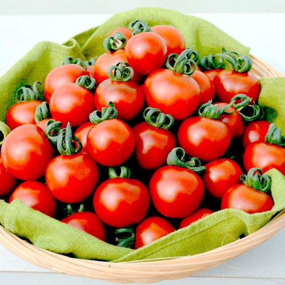 Tomato Seeds - Garnet