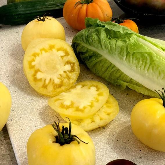 Tomato Sutton (3)