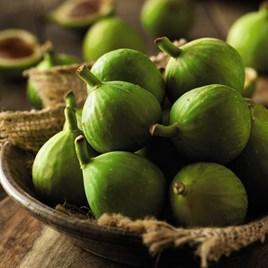 Ficus (Fig) Carica (Green Fig)