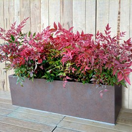 Rectangle Planter - Weathered Iron 90 Litre