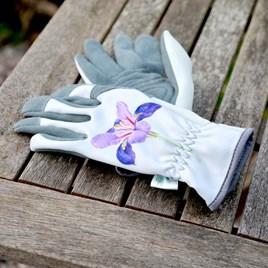 RHS Malvern Glove