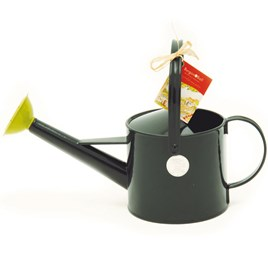 Budding Gardener 1 Litre Watering Can