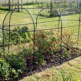 Steel Fruit Cage