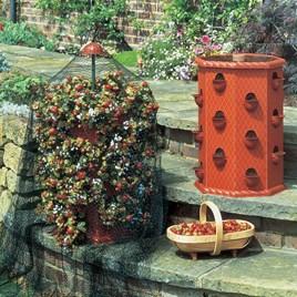 Victorian Strawberry Planter