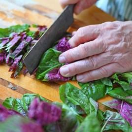 Leaf Salad Seeds - Amaranth Superfood Salad Mix