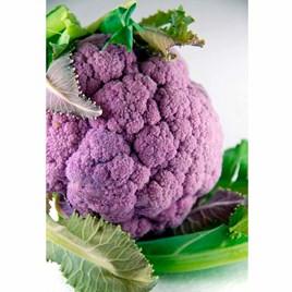 Cauliflower Di Sicilia Violetto