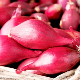 Onion (Bulb) Seeds - Red Baron