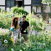 Visit Anne Hathaway's Cottage and Gardens with Light Lunch for Two