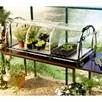 Jumbo Propagator - Heat Mats - Self Watering Trays
