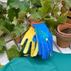 Get Me Gardening - Children's Gardening Accessories
