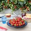 Strawberry Plants - F1 Delizz®