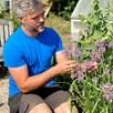 Allium cernuum Seeds