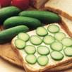 Cucumber Seeds - Rocky F1