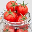 Tomato Plants - F1 Summerlast